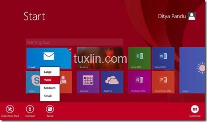 Windows 8.1 Tuxlin_02