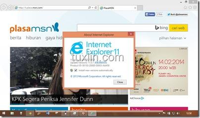 Windows 8.1 Tuxlin_04