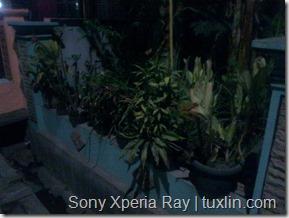 Kamera Xiaomi Redmi 1S vs Sony Xperia Ray Tuxlin Blog_19