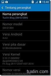 Screenshot Samsung Galaxy Young 2 Tuxlin Blog_24