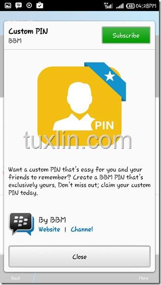 Custom PIN BBM Tuxlin Blog02