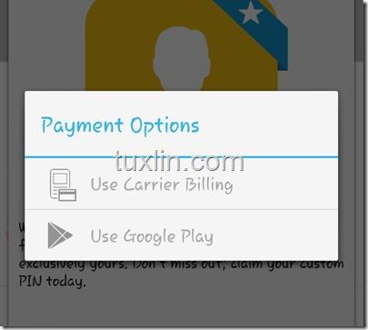 Custom PIN BBM Tuxlin Blog03