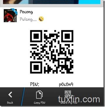 Customs PIN BBM Tuxlin Blog01